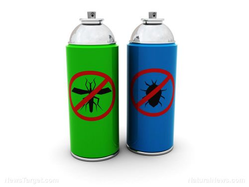 Insecticide exposure can increase the likelihood of children getting cancer by 50%