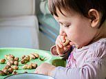 Feeding peanuts to babies from three months 'could protect them from allergies'