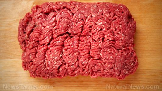 About 50% of lamb mince sold in Australian supermarkets contains a dangerous parasite that may cause brain damage