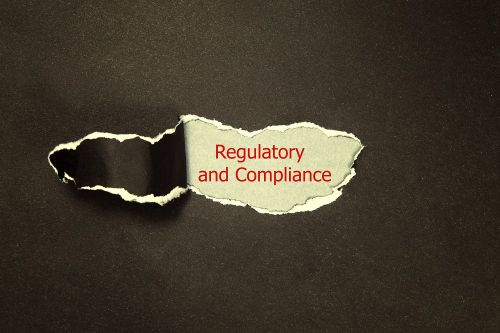 Regulatory Affairs: Your critical partner in innovation and business growth