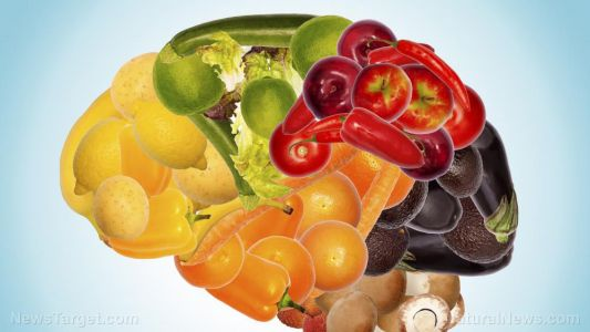 Researchers emphasize the importance of nutrition in preventing dementia