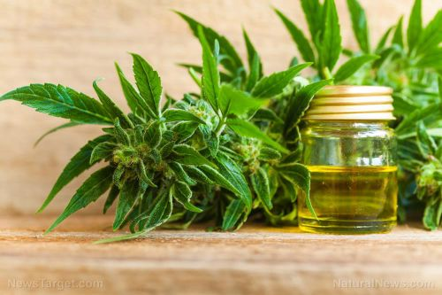 What science is confirming about the benefits of CBD oil
