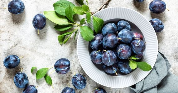 Health Benefits of Plums and Crazy Facts