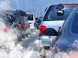 Traffic pollution linked to aging and asthma in children