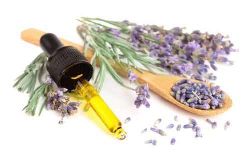Aromatherapy to Help You Relax, Focus, Balance, and Revive