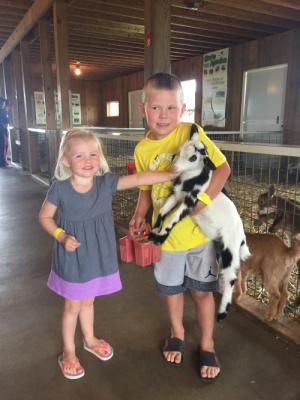 Petting Zoo Under Investigation After Child's E. Coli Death