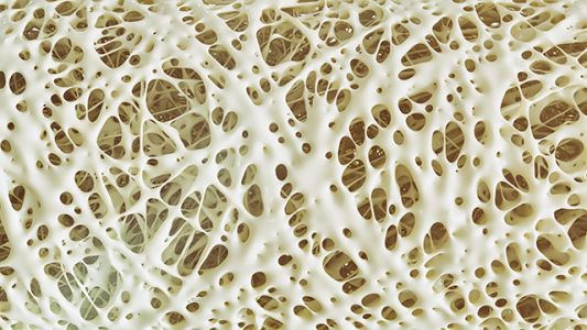 Drugs are bad for your bones: Women can get osteoporosis even before menopause, if they take these drugs