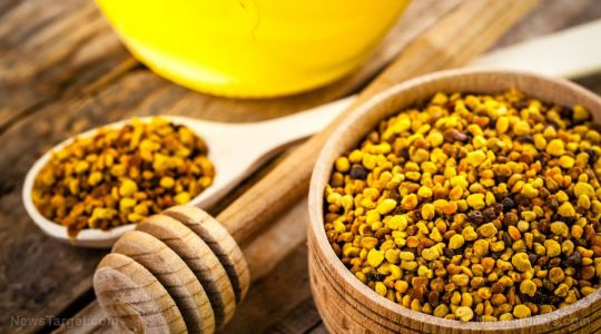 Bee pollen is one of nature's most complete superfoods - here's why