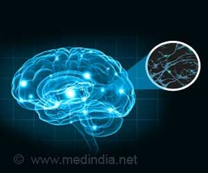 Huntington's Disease: New Insights into What Causes the Disease