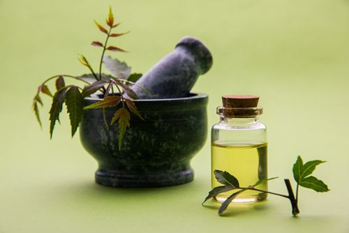Neem oil found to be effective at fighting sleeping sickness