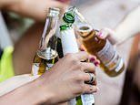 Frequent drinking is 'a bigger risk to health than binge drinking', study claims