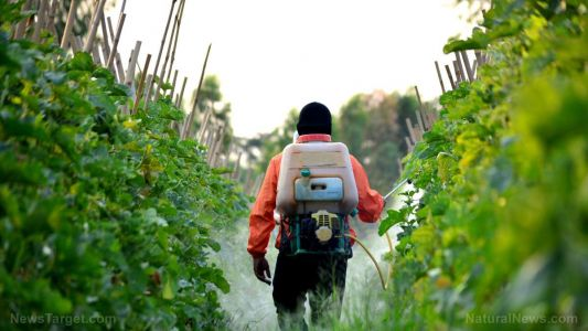 Injunction stops pesticide spraying in California to enforce compliance with environmental laws
