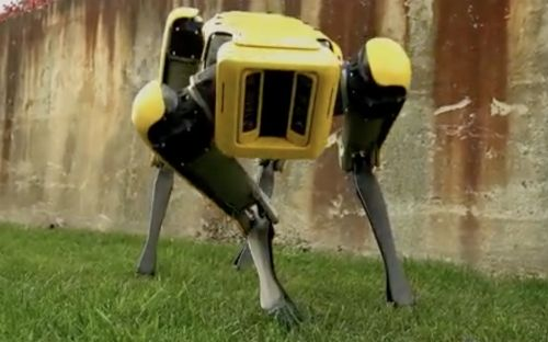 Air Force deploying creepy robot dogs to enhance security at military base in Florida