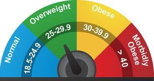 Cutting daily calorie intake reduces fat mass better than alternate-day fasting