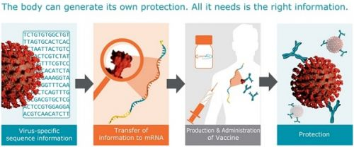 """Moderna's mRNA injections are an """"operating system"""" designed to program humans and hack their biological functions"""