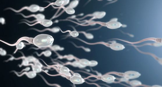 Using Pre-Ejaculation Sperm May Help Infertile Men