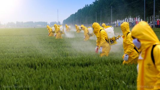What can be done to address the number of suicides carried out with pesticides?