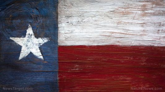 Texas - yes, Texas - could be the next state to end cannabis prohibition