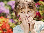 DR MICHAEL MOSLEY: Can infecting children with stomach ulcer bacteria really stop allergies?