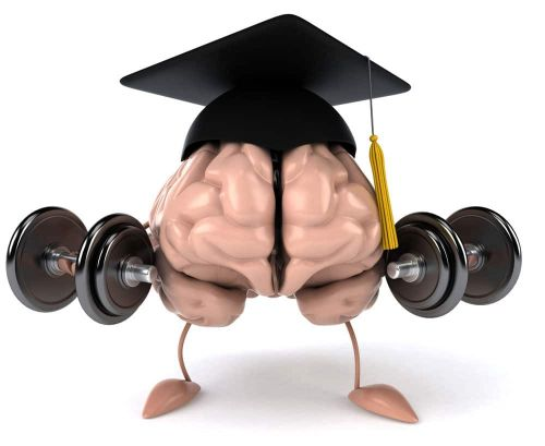 Can Weight Training Make You More Intelligent?