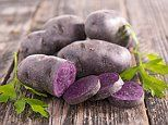 Purple potatoes may slash risk of colon cancer and IBD