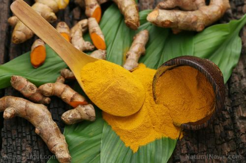 Curcumin targets aggressive and lethal forms of cancer while leaving noncancerous cells unharmed