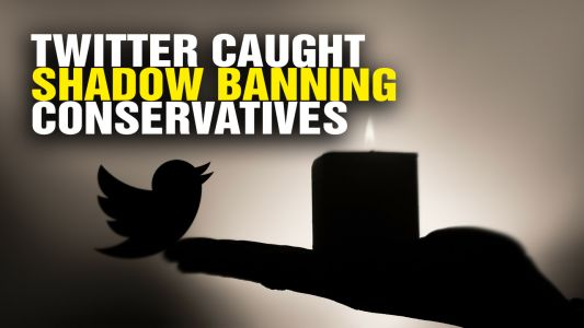 Liberal logic: Since Twitter says it isn't shadow-banning conservatives, we should somehow believe Twitter's investigation of itself