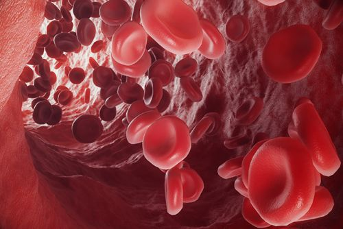 Study: Dietary cystine can improve blood albumin levels