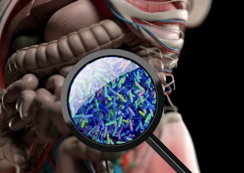 Child's microbiome can predict onset of coeliac disease
