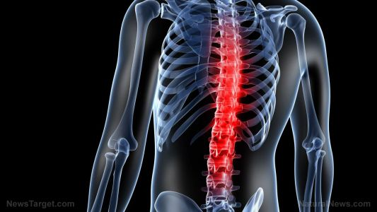 Study: Boosting selenium intake can help reduce osteoporosis risk