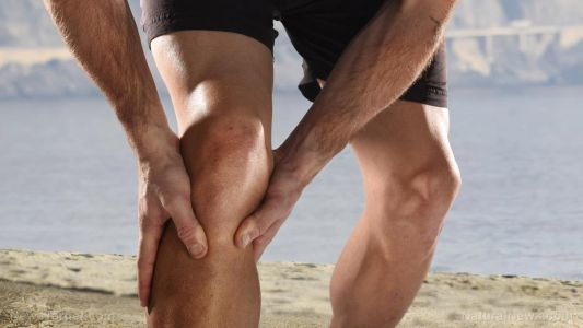 Dietary fiber found to reduce osteoarthritis knee pain in first-ever study of its kind