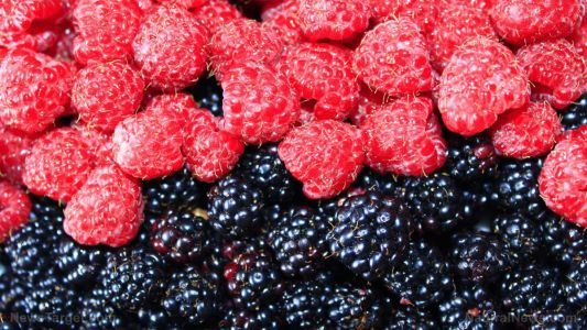 Here are the healthiest fruits you can eat