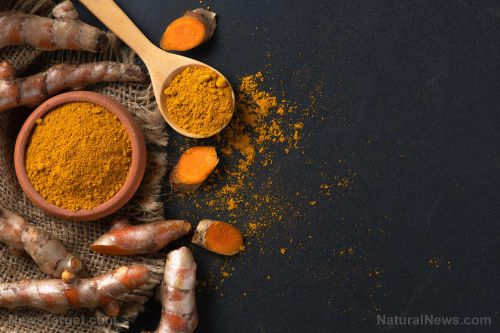 Study presents evidence supporting the use of curcumin as alternative treatment for kidney fibrosis