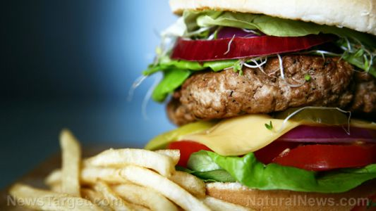 The Western diet can impair memory function