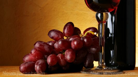A compound found in grapes and wine can regulate blood glucose in people with Type 2 diabetes