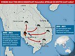 Malaria parasites resistant to key drugs have spread rapidly in South East Asia