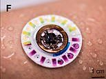 Tiny skin patch the size of a dollar coin uses your sweat to measure health risks without a needle
