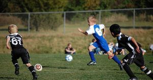Over 20 years, no sports-related fatalities in cohort with genetic heart disease
