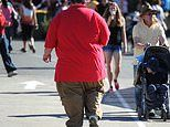 GPs will be paid bonus £11.50 for each obese patient they refer for weight management help