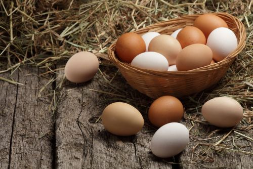 5 Surprising Health and Nutritional Facts about Eggs That Might Surprise You