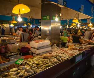 Live Wild Animals in Food Markets Create Utmost Risk for Human Health