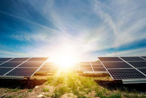 Next-gen solar cells use bacteria that convert light into energy