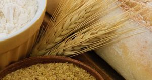 Eating more whole grains may help patients maintain waist size, BP, blood sugar