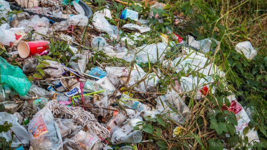 Toxic chemicals from plastic waste are migrating into food and harming soil, warn experts