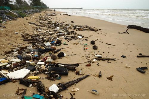 Plastic food packaging overtakes cigarette butts as most abundant litter on beaches