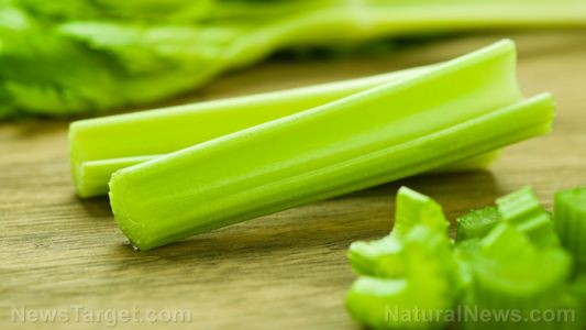 Compounds found in celery make it a powerful healing plant