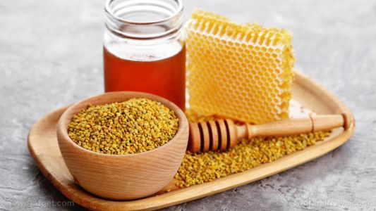 Athletes who eat bee bread while training have higher running endurance