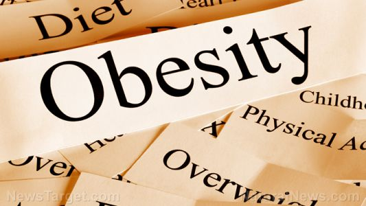 Study: Extreme adiposity associated with obesity starts with inflammation in the brain
