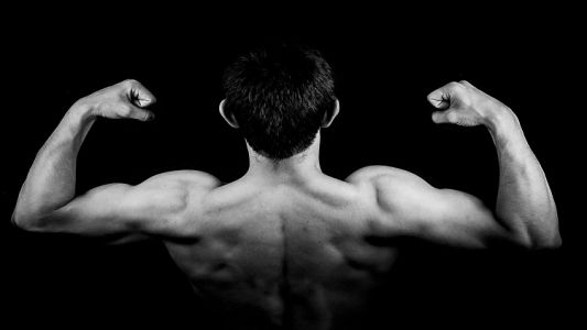 Probiotics for building muscle mass: Synbio Tech targets the US market with 'world's first' sports product