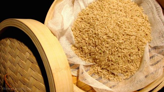 Rice can protect against obesity - if you're eating the right kind